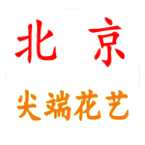 北京市朝阳区尖端花艺